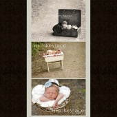 MonkeyFacePhotographyBlog