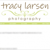 TracyLarsenClientSite