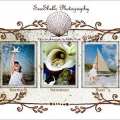 seashellsphotographysplash
